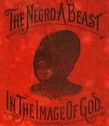 The Negro a Beast Book Cover