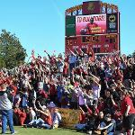SCENES FROM TOP TAGGART FIELD