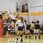 THE BULLDOGS ALSO BATTLED WAYNE STATE DURING THEIR HOME STAND.