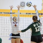 THE BULLDOGS DEFEATED WAYNE STATE, 3-1, IN THE GLIAC TOURNEY SEMIFINALS.