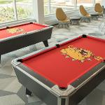 North Hall pool tables