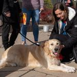 """""""COMPANIONS IN THE QUAD"""" WAS A HIGHLIGHT OF DISABILITY AWARENESS MONTH AT FERRIS."""