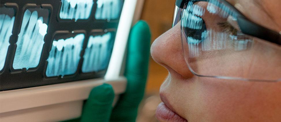 Dental Professionals Workshops