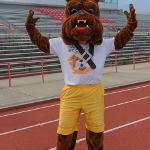 RUFUS JOINS THE ACTION AT THE HOMECOMING KICKBALL TOURNAMENT.