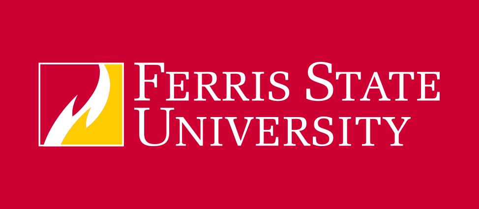 visual identity and brand standards ferris state university