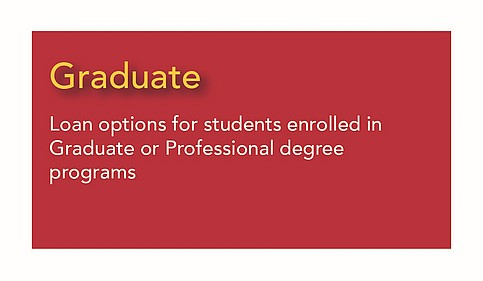 Graduate - options for students in graduate or professional degree programs
