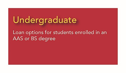 Undergraduate - options for students enrolled in an AAS or  BS degree